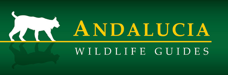 Andalucia Wildlife Guides
